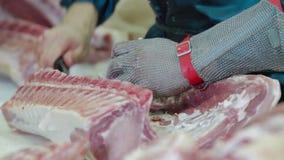 Die Fleischfabrik bereitet Frischfleisch für Lieferung zu den Speichern zu stock footage