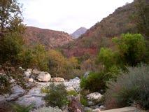 Die Flussansicht lizenzfreies stockfoto
