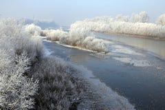 Die Flusslandschaft mit weichem Raureif auf Bäumen stockbilder