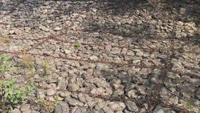 Die Flussverdammung, verstärkt mit Steinen, gurtete Armatur und Draht stock video footage