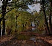 Die Flut auf dem Irtysch Stockfoto