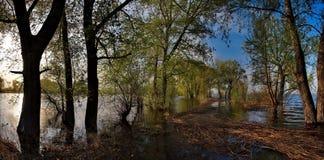 Die Flut auf dem Irtysch Stockfotos