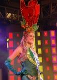 Die Fräuleinniederlande, die nationales Kostüm tragen Lizenzfreies Stockfoto