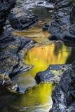 Die früher Morgen-Farbe von Watkins Glen State Park Stockfotos
