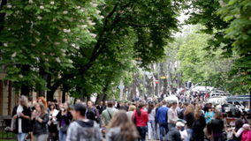Die Frühlingsfeier im Stadtpark stock footage