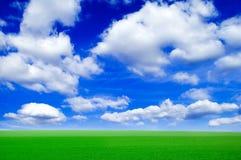 Die Frühlingsfelder. Stockfotos