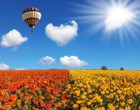 Die Frühlingssonne und -ballon lizenzfreie stockfotos