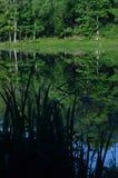 Die Frau, die auf entferntes Ufer von Teich geht, Bäume reflektierte sich im Wasser Lizenzfreie Stockbilder