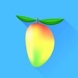 Die Frau, die eine Mangofrucht zeigt, trägt Früchte, geschnitten und geschnitten Lizenzfreies Stockfoto