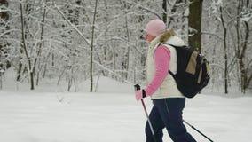 Die Frau im Holz im Winter Der Pensionär mittels der speziellen Stöcke nimmt im Holz an teil stock video footage