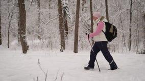 Die Frau im Ski spürt eine Klage im Holz auf Der Pensionär mittels der speziellen Stöcke nimmt an im Th teil stock video footage