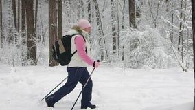 Die Frau im Winterholz Der Pensionär bearbeitet das skandinavische Gehen Das Skandinaviergehen ist zu sehr nützlich stock footage