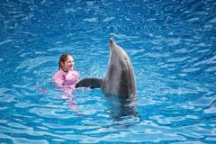 Die Frau mit Delphin tanzen zusammen in Pool lizenzfreie stockfotos