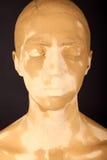 Die Frau mit der Gesichtsmaske Lizenzfreie Stockbilder