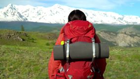 Die Frau mit einem roten Rucksack geht Grün ein Leid hinauf Ansicht von Schneebergen Morgen Sun Die Frau in den Händen hat Stöcke stock video