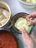 Die Frau setzt das Anfüllen auf die Kohlblätter und -verpackungen es Vorbereitung von Kohlrollen Stadien der Vorbereitung Vorbere Lizenzfreie Stockfotos