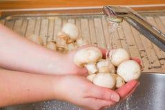 Die Frau wäscht Pilze Lizenzfreies Stockbild