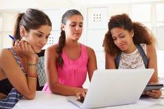 Die Frauen, die Laptop im modernen Büro von verwenden, gründen Geschäft lizenzfreie stockbilder