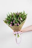 Die Frauenhand, die weiche lila Tulpen hält, blüht auf weißem Hintergrund Blumenstrauß verziert mit Kraftpapier Lizenzfreie Stockbilder