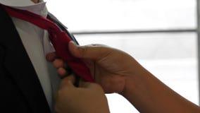Die Fraukrawattenbindung zu ihrem Ehemann bevor dem Gehen zu arbeiten stock footage