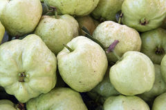 Guajava-Frucht. Stockfotografie