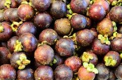 Die frische Mangostanfruchtfrucht symmetrisch, zum von Käufern am Markt anzuziehen klemmen fest stockbilder