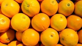 die frische rohe Orange Stockfotografie