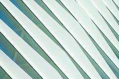 Die futuristische Fassade eines modernen Gebäudes in Valencia Stockbild