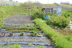 Die Gärten am Landsitz Harberton Lizenzfreie Stockbilder