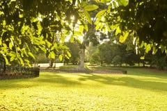 Die Gartenstadt-Reihe stockbild