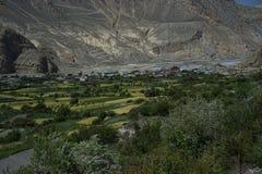 Die Gebirgsfelder in Annapurna-Stromkreis lizenzfreie stockbilder