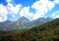 Die Gebirgslandschaft der Steigungen umfasst durch Wald Stockbild