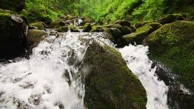 Die Gebirgsstromflüsse abwärts mit Kaskaden stock video