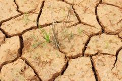 Die gebrochene Erde Lizenzfreies Stockfoto