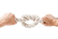Die gebundenen Hände knoten auf einem Seil Stockfoto