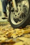 Die Gefahr des Reitens eines Motorrades auf nasse Blätter während des Herbstes Stockbild