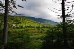 Die geflossenen Länder in den Adirondack-Bergen, Region der hohen Spitzen Lizenzfreie Stockfotos