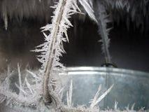 Die gefrorene Wanne lizenzfreie stockbilder
