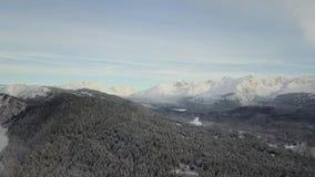 Die gefrorene Wildnis der Chugach-Berge stock footage