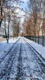 Die geklärte Straße im Park, gesäubert in Winter in der Stadt, die Straße säuberte bis zum sonnigem Tag Asphalt im Schnee nahe be Lizenzfreies Stockbild