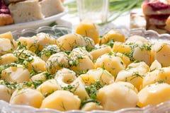 Die gekochte Kartoffel auf dem Kreisteller auf der Feiertagstabelle Stockbilder