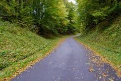 Die gepflasterte Straße geht unten zur Unterseite, von der die gelben Apfelblätter liegt lizenzfreie stockbilder
