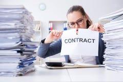 Die Geschäftsfrau, die ihren Vertrag auseinander reißt lizenzfreie stockbilder