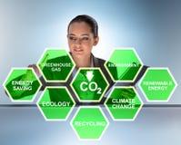 Die Geschäftsfrau im Ökologie- und Umweltkonzept lizenzfreies stockbild