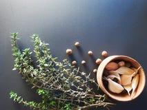 Die Gewürze - Thymian, Kreuzkümmel und Knoblauch stockbilder