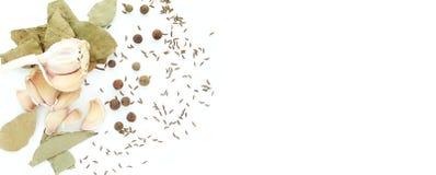 Die Gewürze - Thymian, Kreuzkümmel und Knoblauch stockbild