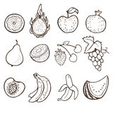 Die gezeichnete Hand trägt Sammlung Früchte Lizenzfreie Stockbilder
