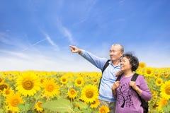 Die glücklichen älteren Paare, die in der Sonnenblume stehen, arbeiten im Garten Stockfotografie