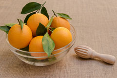 Die Glasschüssel mit Orangen Stockfoto
