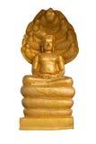 Die Gold-Buddha-Statue, die auf sieben Köpfen sitzt, schlängeln sich lokalisiert auf weißem Hintergrund Lizenzfreies Stockbild